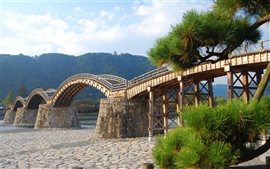 Preview wallpaper Arched wooden bridge