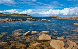 Покрытые скалы побережья