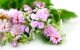 As flores frescas e elegante