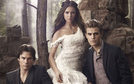 Preview wallpaper The Vampire Diaries TV series