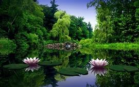 미리보기 배경 화면 호수에있는 수련 꽃