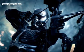 Preview wallpaper Crysis 3 PC game