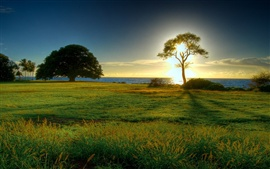Preview wallpaper Grasslands sunrise