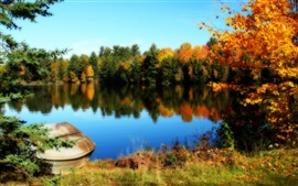 Preview wallpaper Lake and trees of the beautiful fall