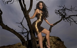 Preview wallpaper Megan Fox 07