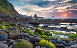Preview wallpaper Moss stone beach sun rises