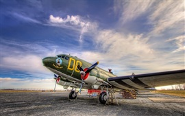Planes Painted Aviation
