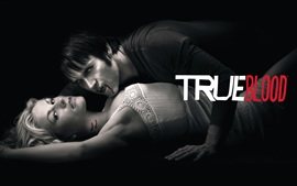Aperçu fond d'écran True Blood HD