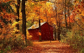 Preview wallpaper Autumn red maple forest cabins