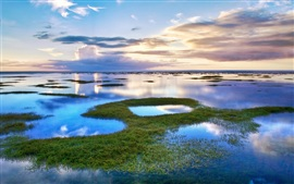 Beautiful landscape lagoon lake water grass and clouds