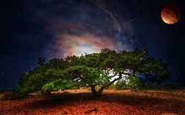 Preview wallpaper Creative design, tree Galaxy planet