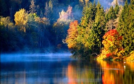 Latvian autumn forest river mist in the morning