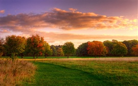 Preview wallpaper Natural landscape, autumn sunrise, forest sky clouds
