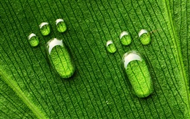 Drops of water on the green leaves footprints