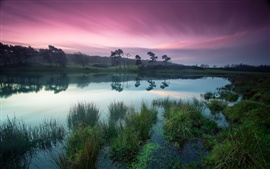 Dusk beauty, tranquil lakes, green trees, purple sky