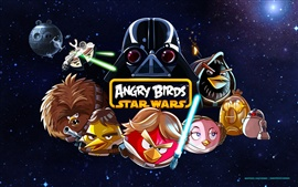 Preview wallpaper Angry Birds: Star Wars