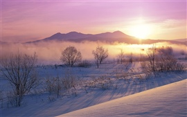 Preview wallpaper Japan winter nature dusk snow