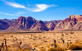 Nevada desert, rocks mountains, red rock canyon