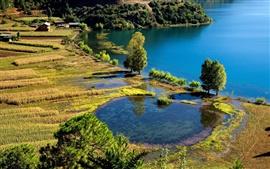 Scenery of village farms, blue lake and pond, fields crops, trees houses