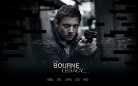 Preview wallpaper The Bourne Legacy
