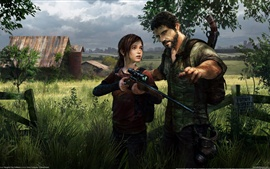 Preview wallpaper The Last of US HD