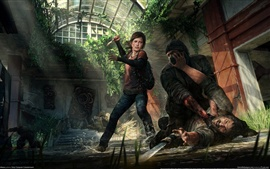 Preview wallpaper The Last of US PC game