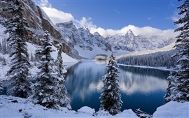 Preview wallpaper Winter, snow-covered mountains and trees, icy lake