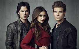 Preview wallpaper The Vampire Diaries 2012 HD