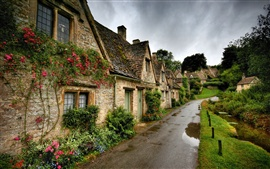 Preview wallpaper Village scenery, road, houses, flowers, green grass, cloudy
