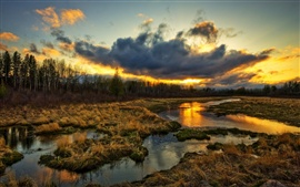 Preview wallpaper Wetlands, trees, clouds, sunset, grass, water stream, beautiful scenery