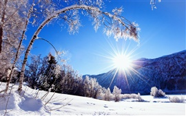 Preview wallpaper Winter, snow, mountains and trees, white scenery, dazzling sunshine