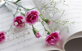 Carnations, flowers, book, musical scores