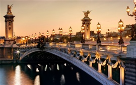 France Paris, Pont Alexandre III, Seine river, city lights night scenery