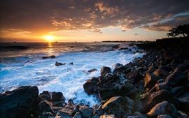 하와이 바다 일몰, 바위, 해안
