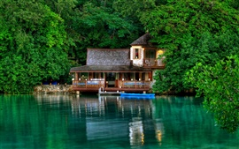 Jamaica scenery, green trees, the lake, the house
