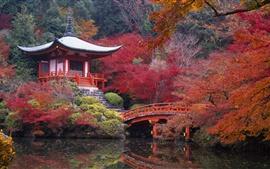Japón Kyoto Daigo otoño paisaje