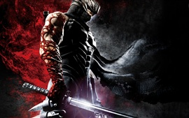 Preview wallpaper Ninja Gaiden 3