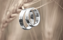 Preview wallpaper Platinum couple rings, love token