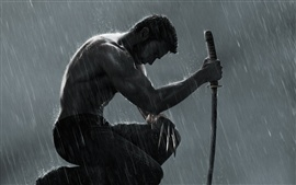 Preview wallpaper The Wolverine 2 HD