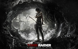 Preview wallpaper Tomb Raider: A Survivor Is Born