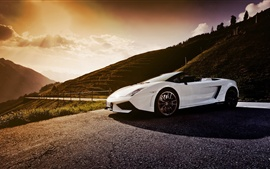 Preview wallpaper White Lamborghini Gallardo LP570-4 Spyder supercar