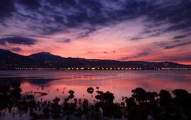 China, Taiwan, strait coast, dawn, sunrise, city lights, pink sky clouds