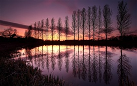 Preview wallpaper England beautiful nature landscape, lake, reflection, trees, sunset, dusk, purple