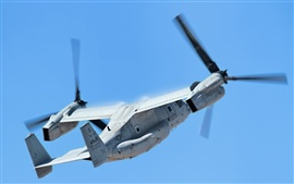 V-22 Osprey transport aircraft flight