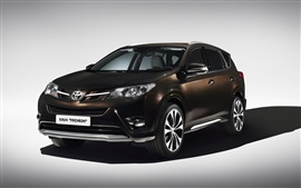 Preview wallpaper 2013 Toyota RAV4 Premium, brown color car