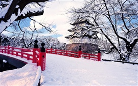 Preview wallpaper Japan, Aomori Prefecture, Hirosaki, winter snow, bridge, castel, ice trees