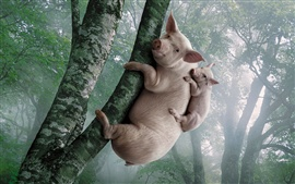 Свинья и поросенок влезть на дерево