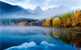 Preview wallpaper The autumn fog forest lake morning