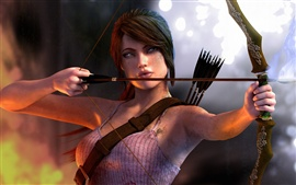 Preview wallpaper Tomb Raider 2013, use the bow