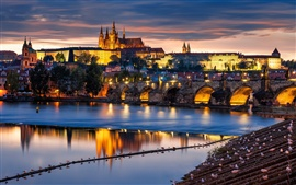 Prague, Czech Republic, city at evening, bridge, river Vltava